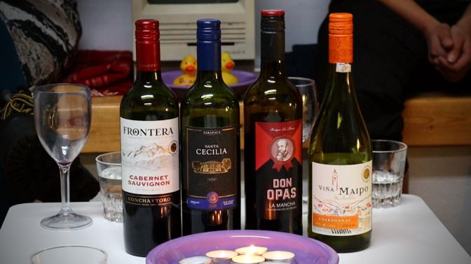 """""""Om nästa är så här dåligt så far jag hem"""" – vi bad en sommelier smaka på Alkos billigaste viner"""